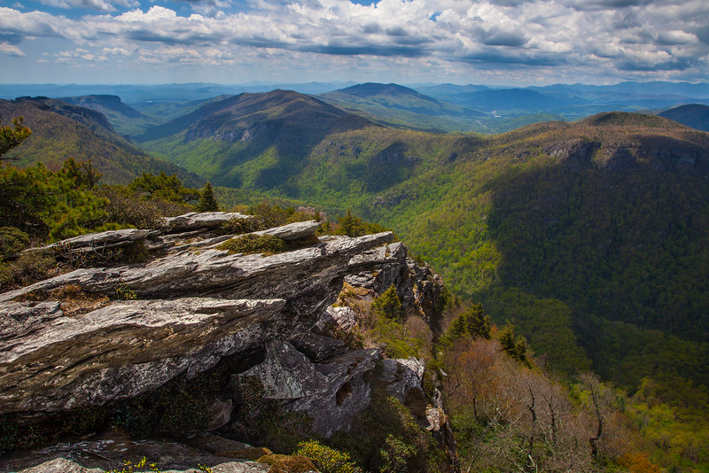 Spring at Linville Gorge