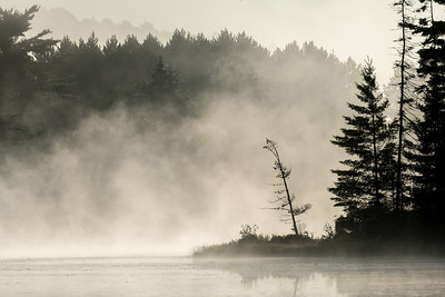 August Mornings in Algonquin