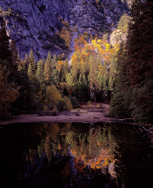reflection off of Merced River in the morning.