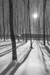 Winterscape with shadows