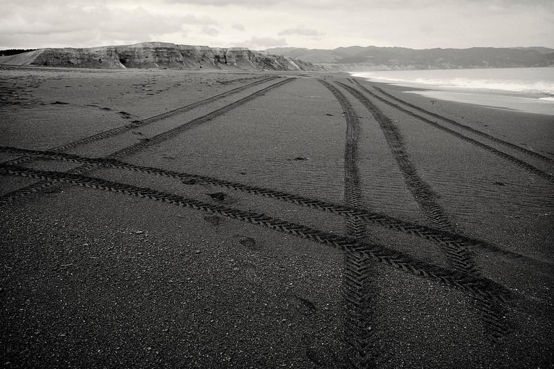 Cape Palliser Bay,  Wairarapa 2013