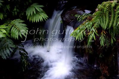 Botonical garden falls-1