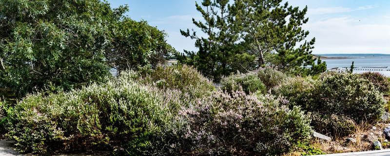 GardenHarbor-35-Pano.jpg