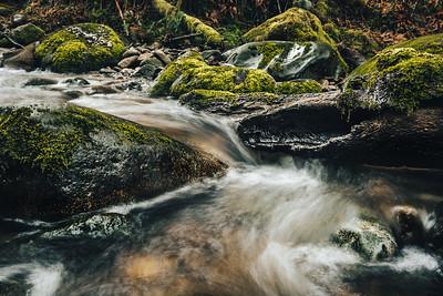 Bon Accord Creek