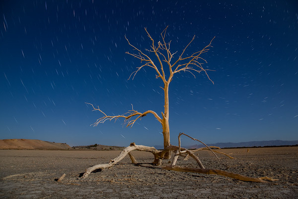 Star trails | Salton Sea | California