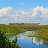 Big Cypress National Preserve located in Florida.