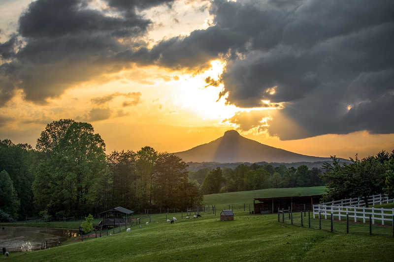 Pilot Mountain Farm