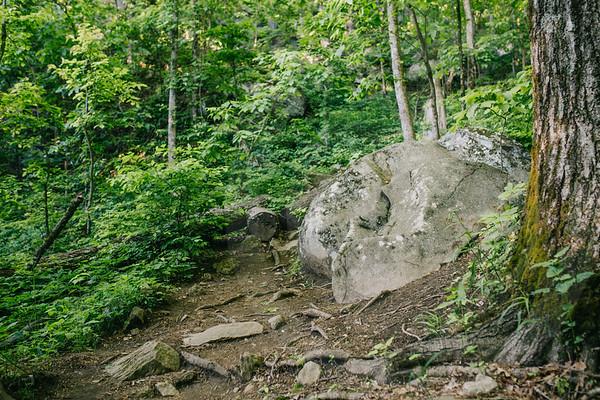 Mt  Yonah-8968
