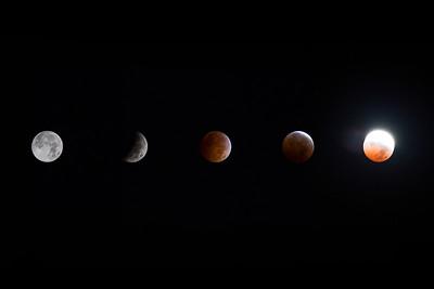 Blood Moon Returns