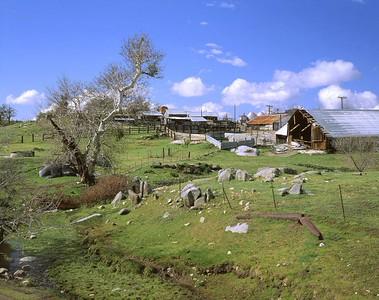 Dairy Farm, Mesa Grande, Ca