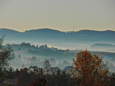 early morning fog-2