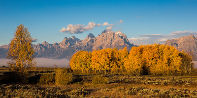 Grand Tetons- Aspens Fall 2016