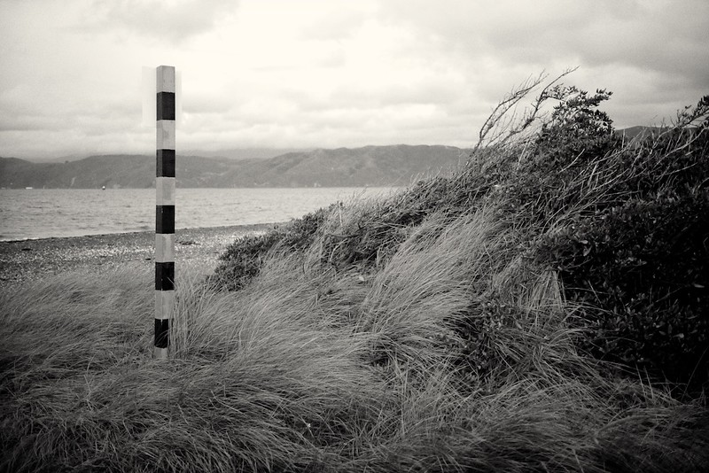Seatoun, Wellington 2012