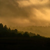 Silhouette of trees through the fog and clouds near the Niobrara River at sunrise