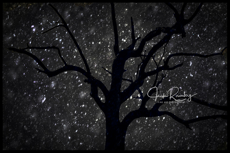"""Starry Snowy Night"""