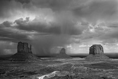 Stormy Mittens