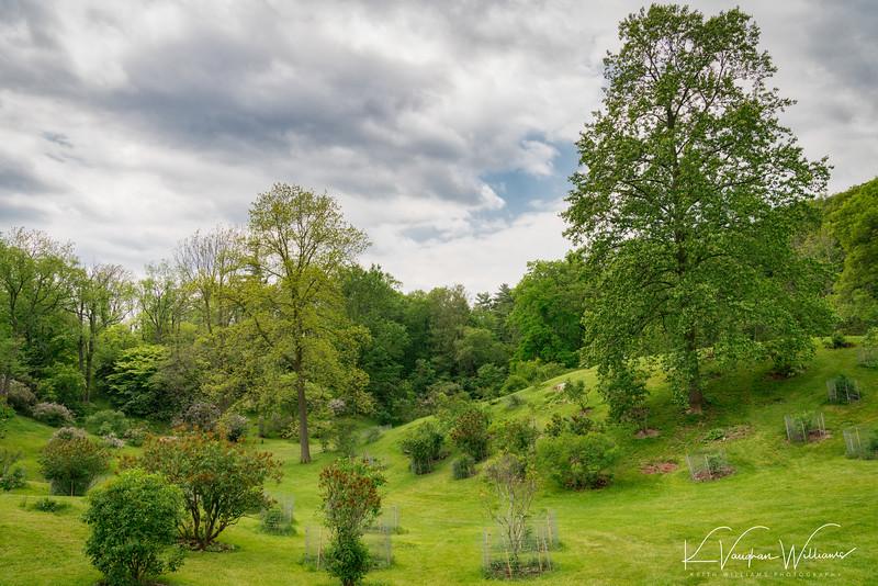 Royal Botanical Gardens Arboretum