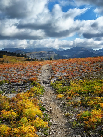 Teton Crest Trail, Wyoming. 2014
