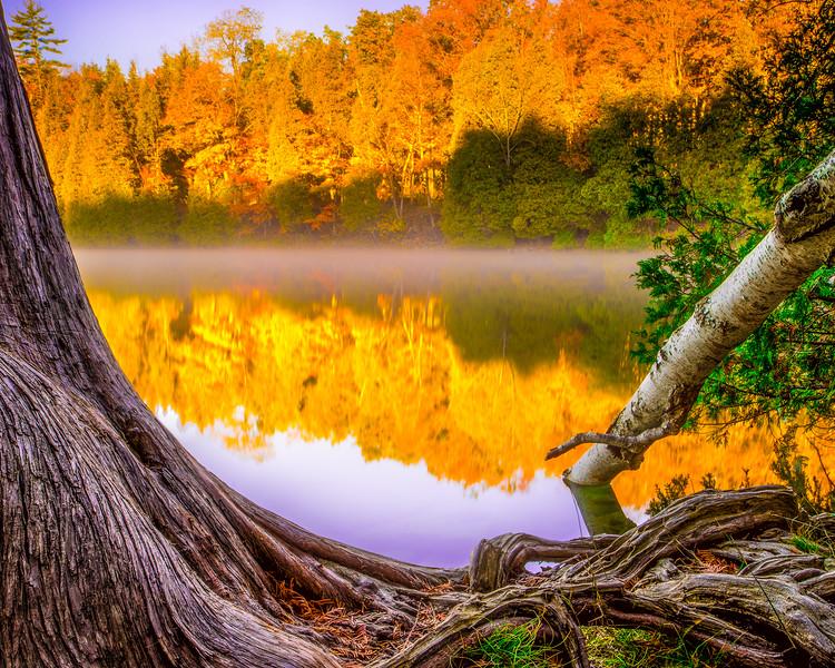 Crawford Lake in the fall