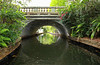 Scenic bridge runs above the Chain of Lakes canal forming a tunnel.  The Chain of Lakes is a popular tourist destination for residents and visitors to Winter Park, Florida, USA.