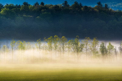 Across a Field at Cades Cove