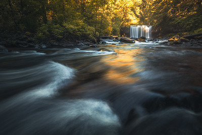 Butte Creek Falls, OR.