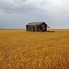 Old House, Near Midland, Texas