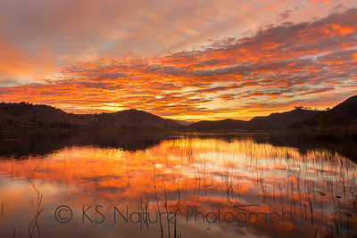 Landscapes from  Lake Hodges