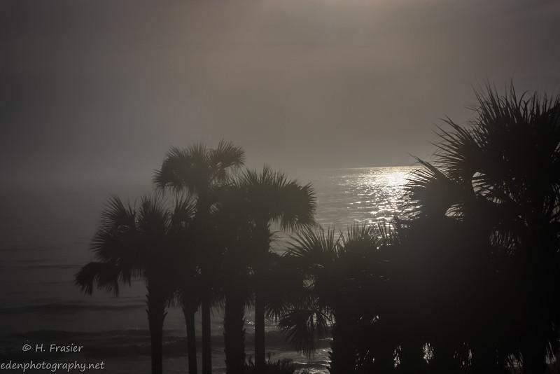 Quite Sunrise
