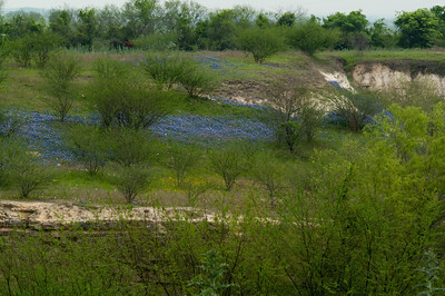 Old quarry on Hwy 390 (La Bahia Rd) between Burton and Longpoint..