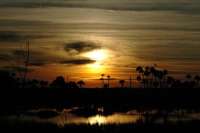 Sunset Lake Woodruff Wildlife Refuge