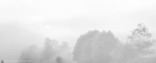 foggy morning-