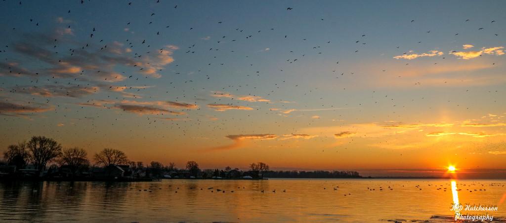 Sunrise at Mud Island