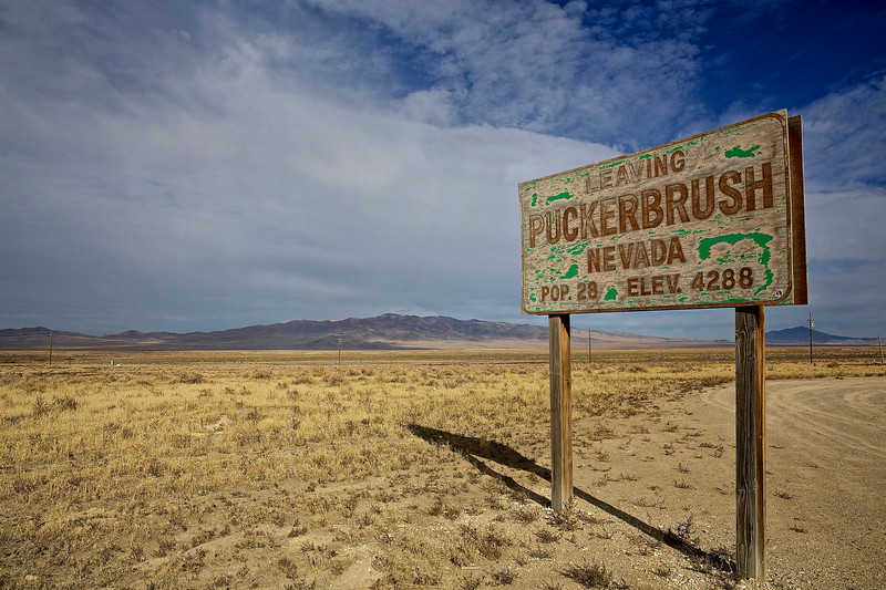 28 Left.  Puckerbrush, Nevada