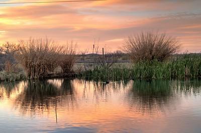 Balmorhea wetlands Texas