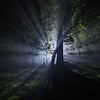 Light from Beyond