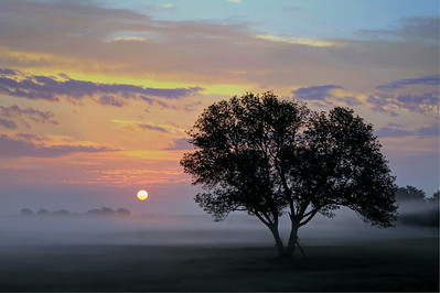 Hill Country Sunrise