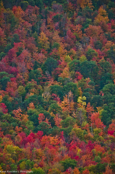 Fall Colors in Adirondacks, NY