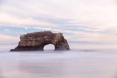 Santa Cruz Natural Bridges