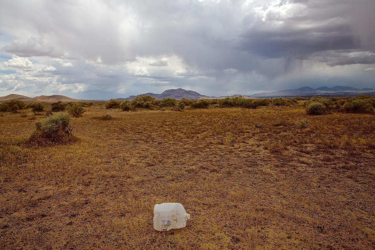 Thirst.  Nevada Desert.