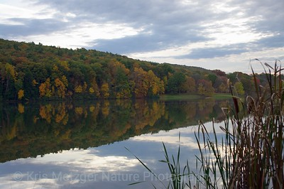 """Reflections In Fall"""