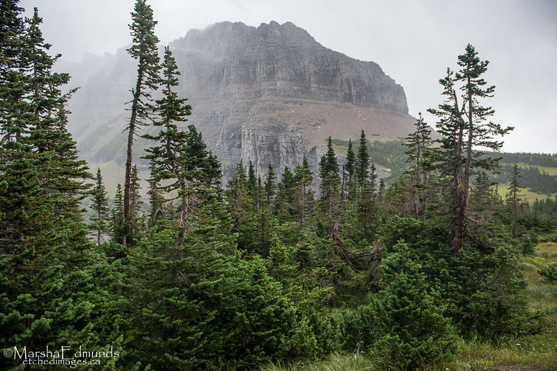 A Storm Moves into the High Country of Logan's Pass