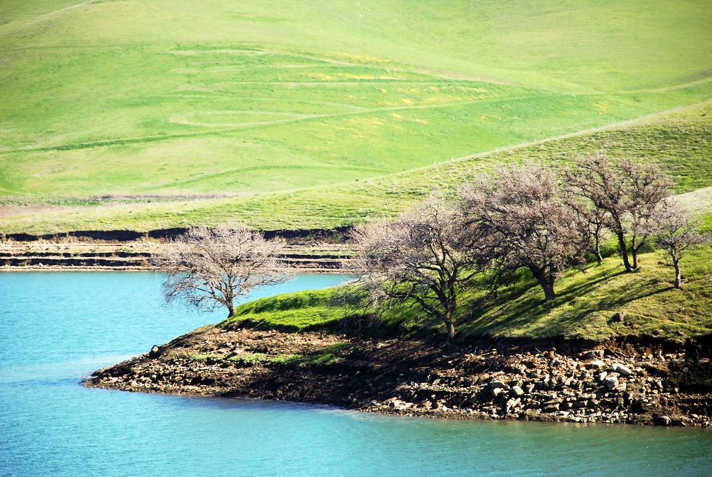 Las Vaqueros Watershed