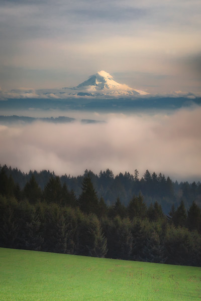 Mt. Hood above the fog.