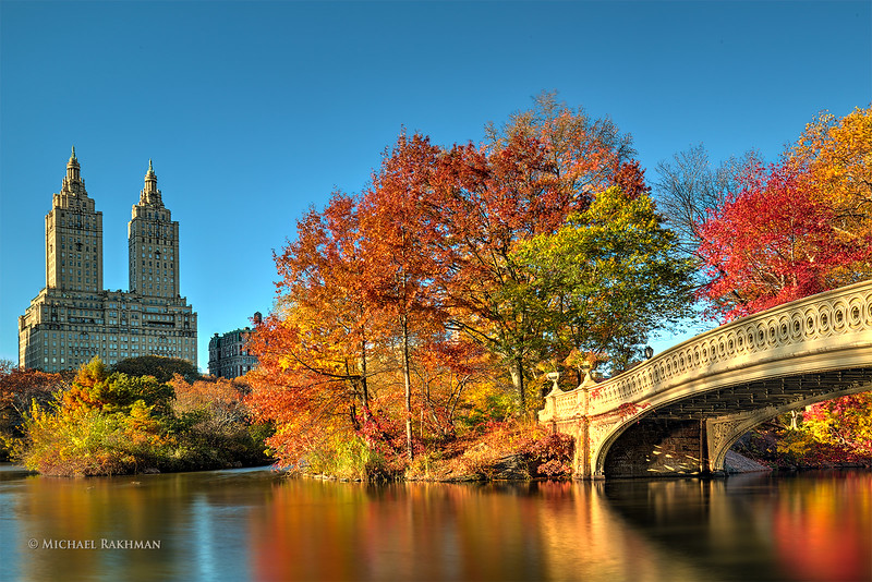 Color Symphony in Central Park