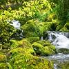 Rogue River 2012-1952