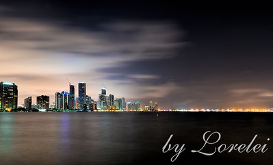 Miami Twilight I