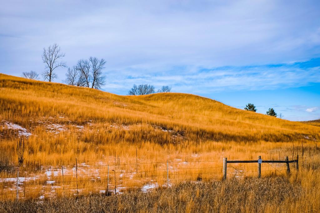 Fields & Prairies