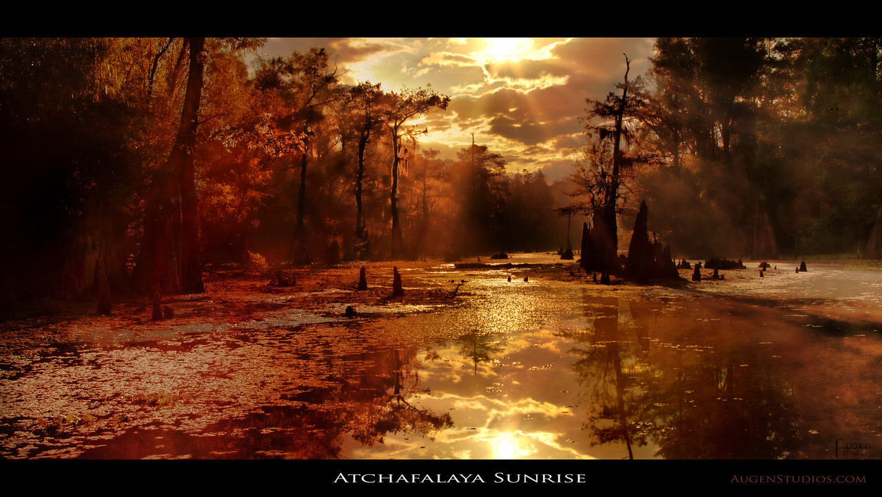 <a>Sunrise in the Atchafalaya Basin, Autumn 2011</a>