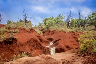 Waimea Canyon State Park: Kauai, HI